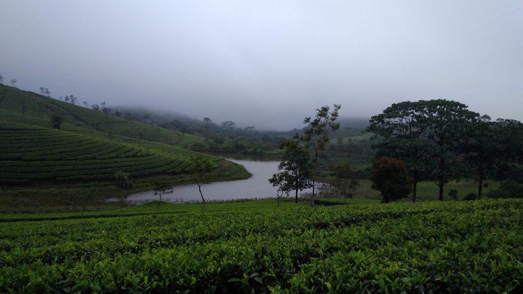 Vagamon scenic Offbeat places in Kerala