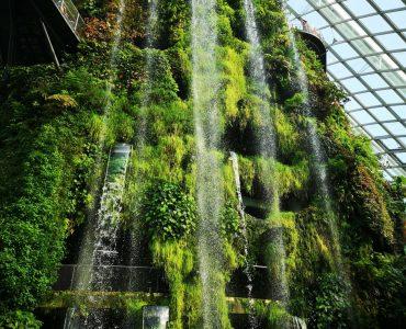 The Green Planet in Dubai