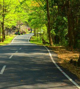 Offbeat road in Kerala