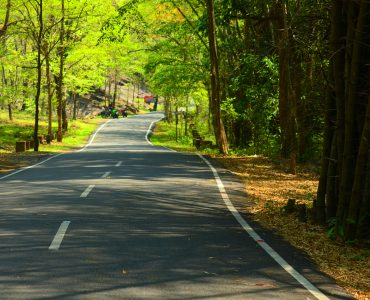 Offbeat road in Kerala