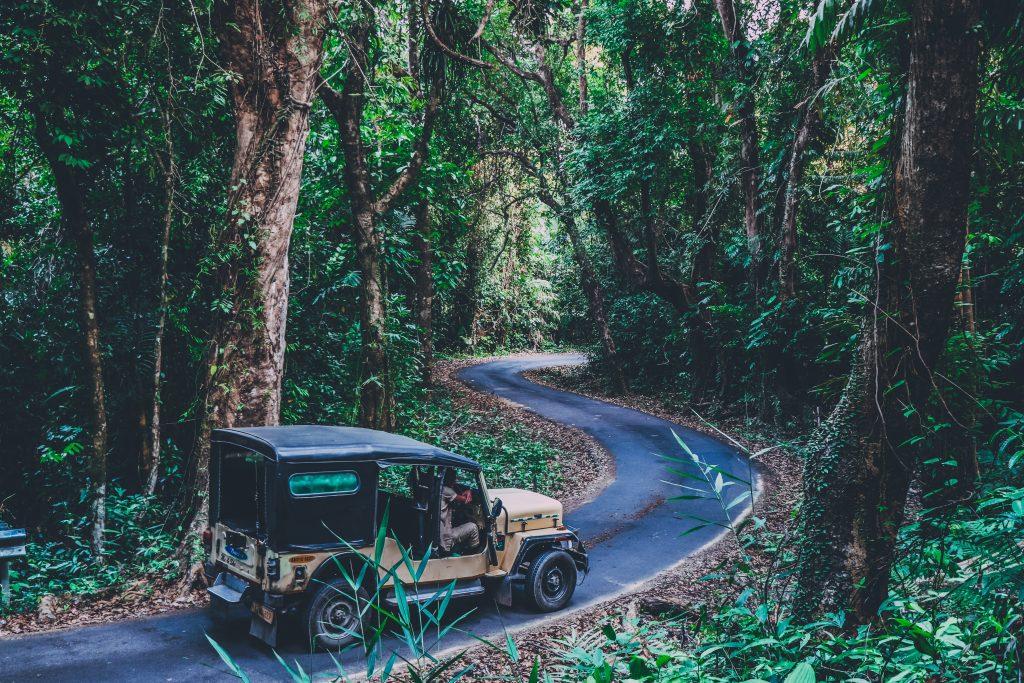 Driving through the ghats