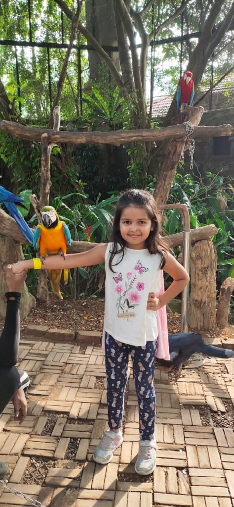Little one posing with the parrot during our family vacation to Singapore