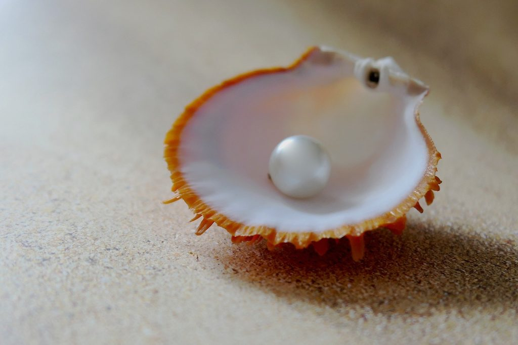 The best thing about shopping in Andaman, Pearls