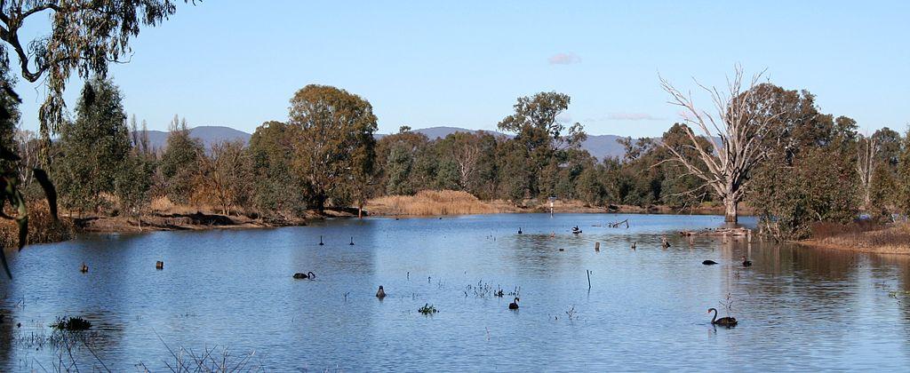Wonga Wetlands