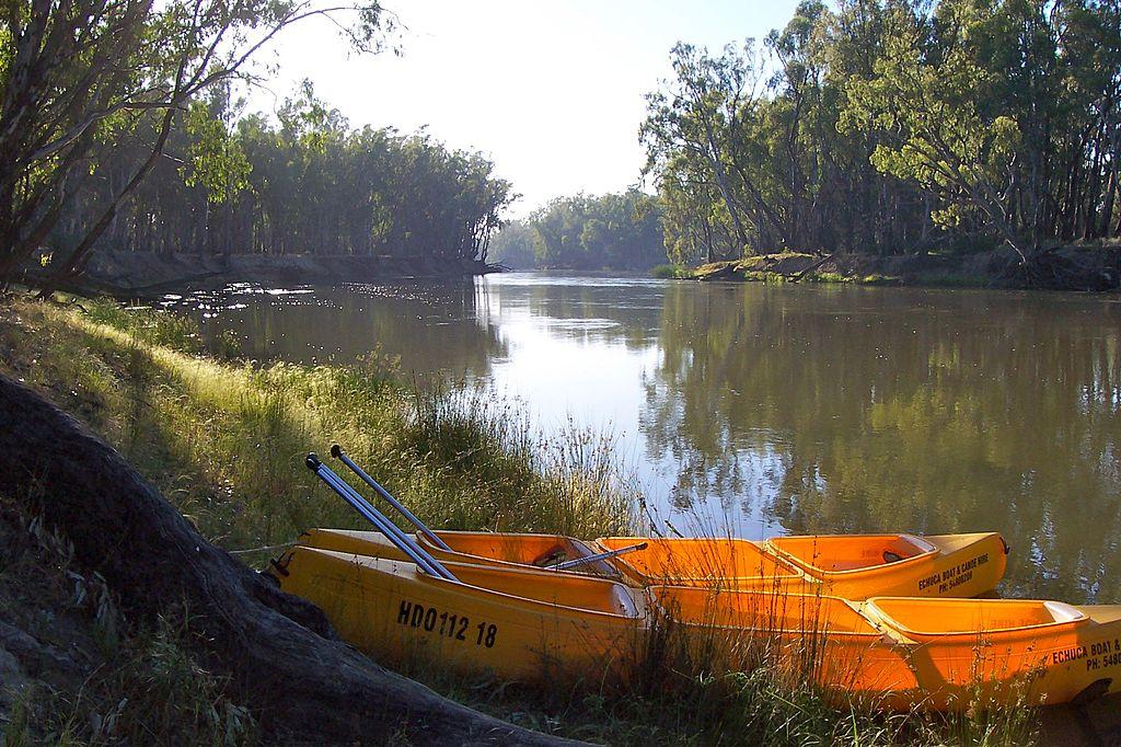 Murray River Canoeing