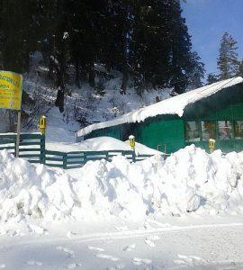 Narkanda in Shimla