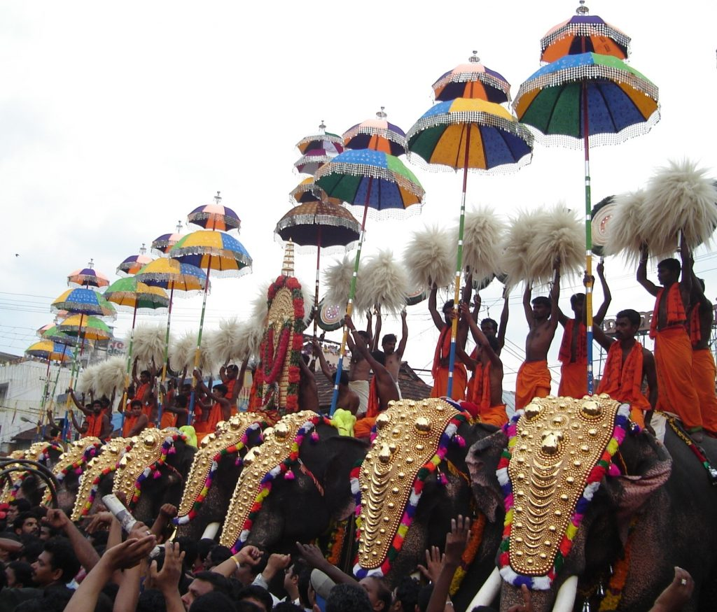Majestic elephants at Thrissur Pooram in Kerala