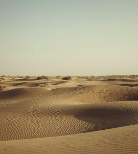 Desert in Rajasthan