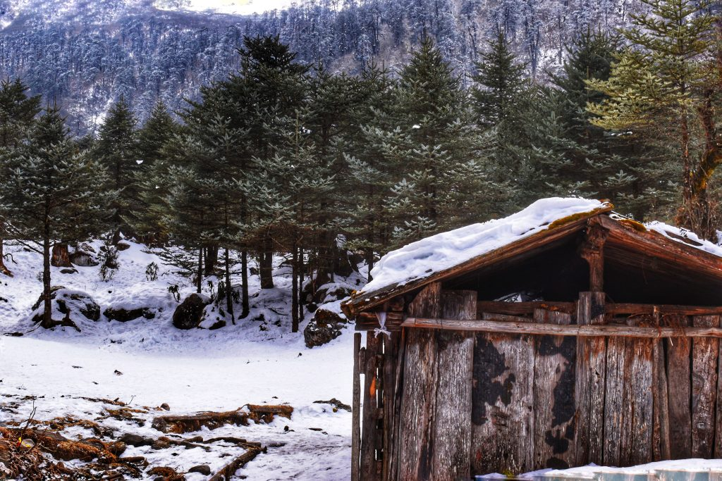 A house surrounded by snowy land during winter, one of the best times to visit the northeast