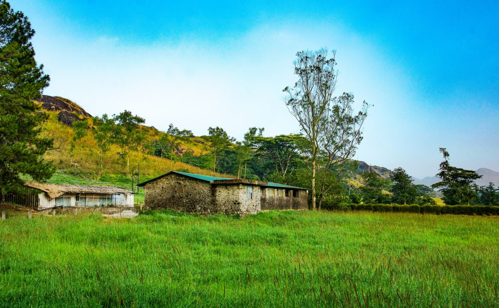 Houses gracefully located amidst greeneries in Vagamon in Kerala