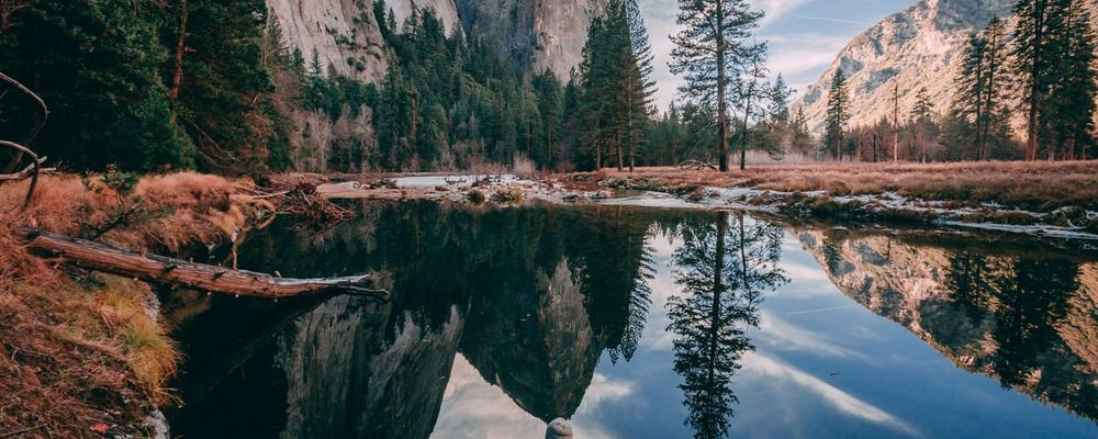 View of the Yosemite national park