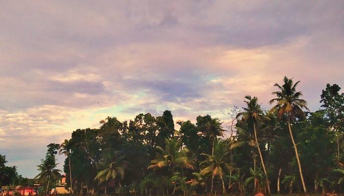 Beautiful lake of Kottayam in Kerala