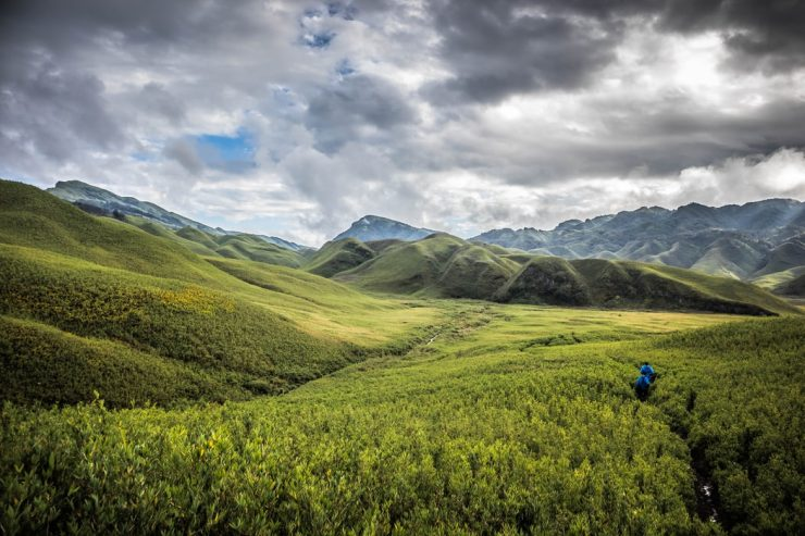 the scenic beauty of Dzukou valley