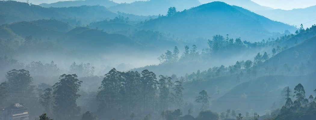 Misty view of Thekkady