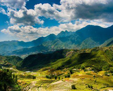 Sapa Vietnam Farm