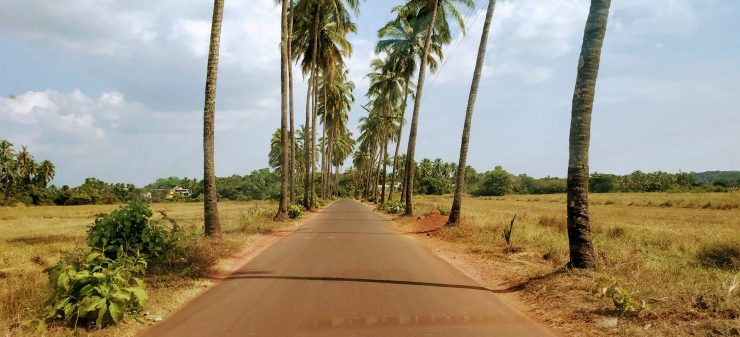 The iconic road of goa that appears in Movies.