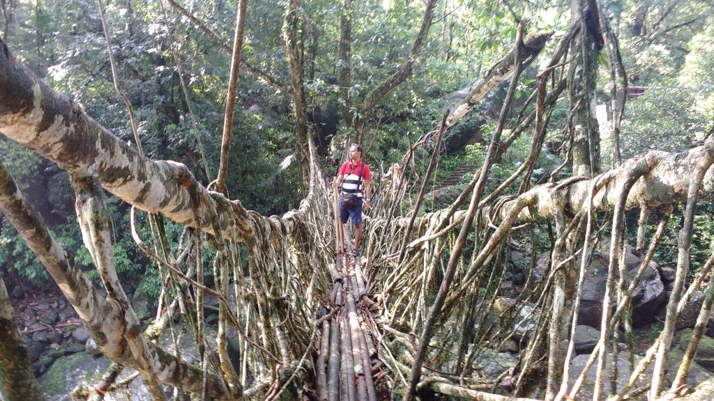 Long foot bridge in Cherrapunji