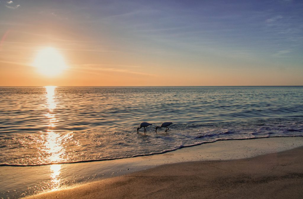 Beaches in Cape Cod