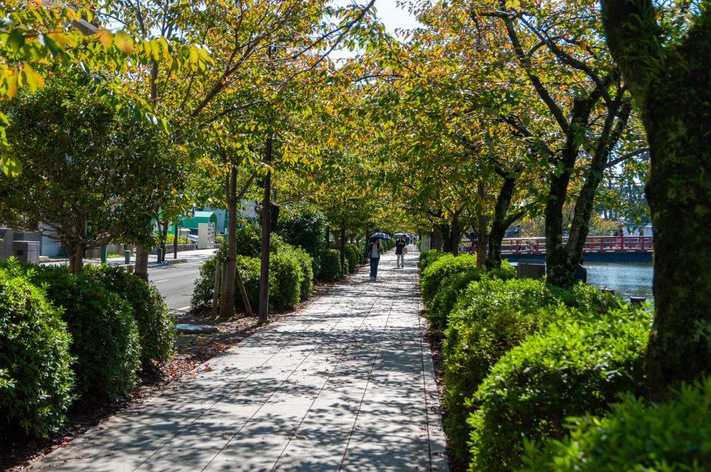 Gardens of Huerto de Calixto y Melibea