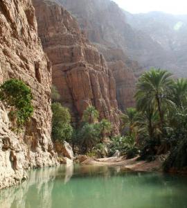 What Makes Visiting Oman