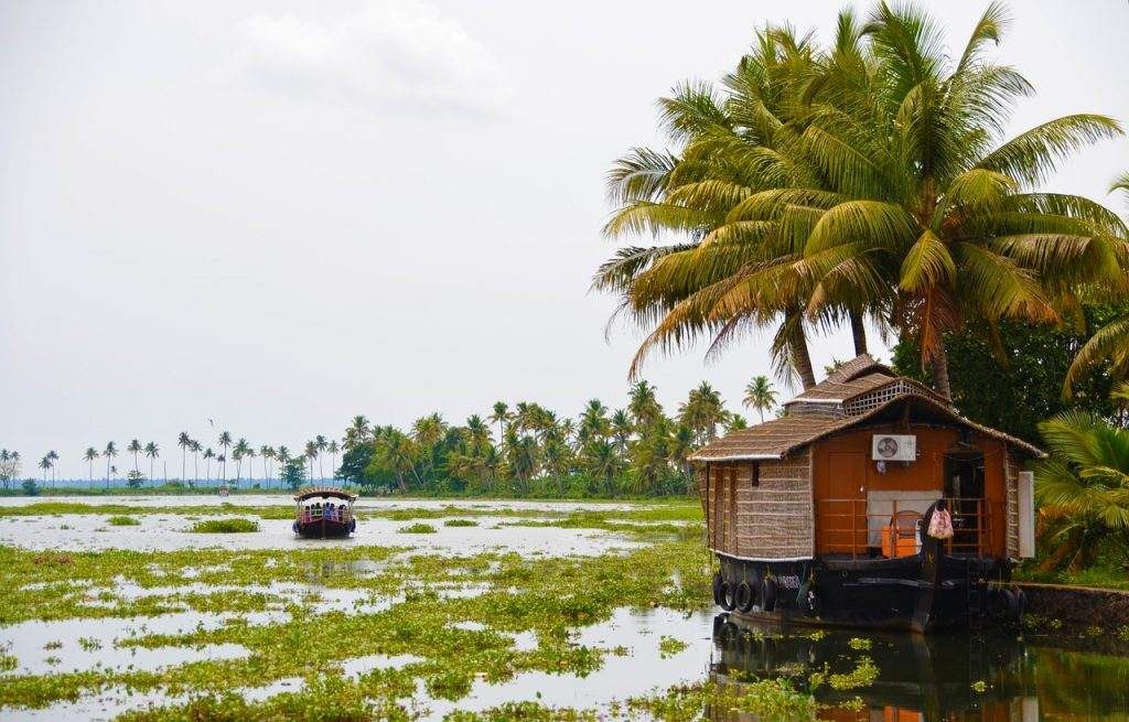 Beautiful and alluring kochi Backwaters