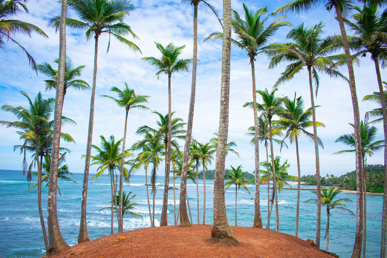 Resorts en Sri Lanka