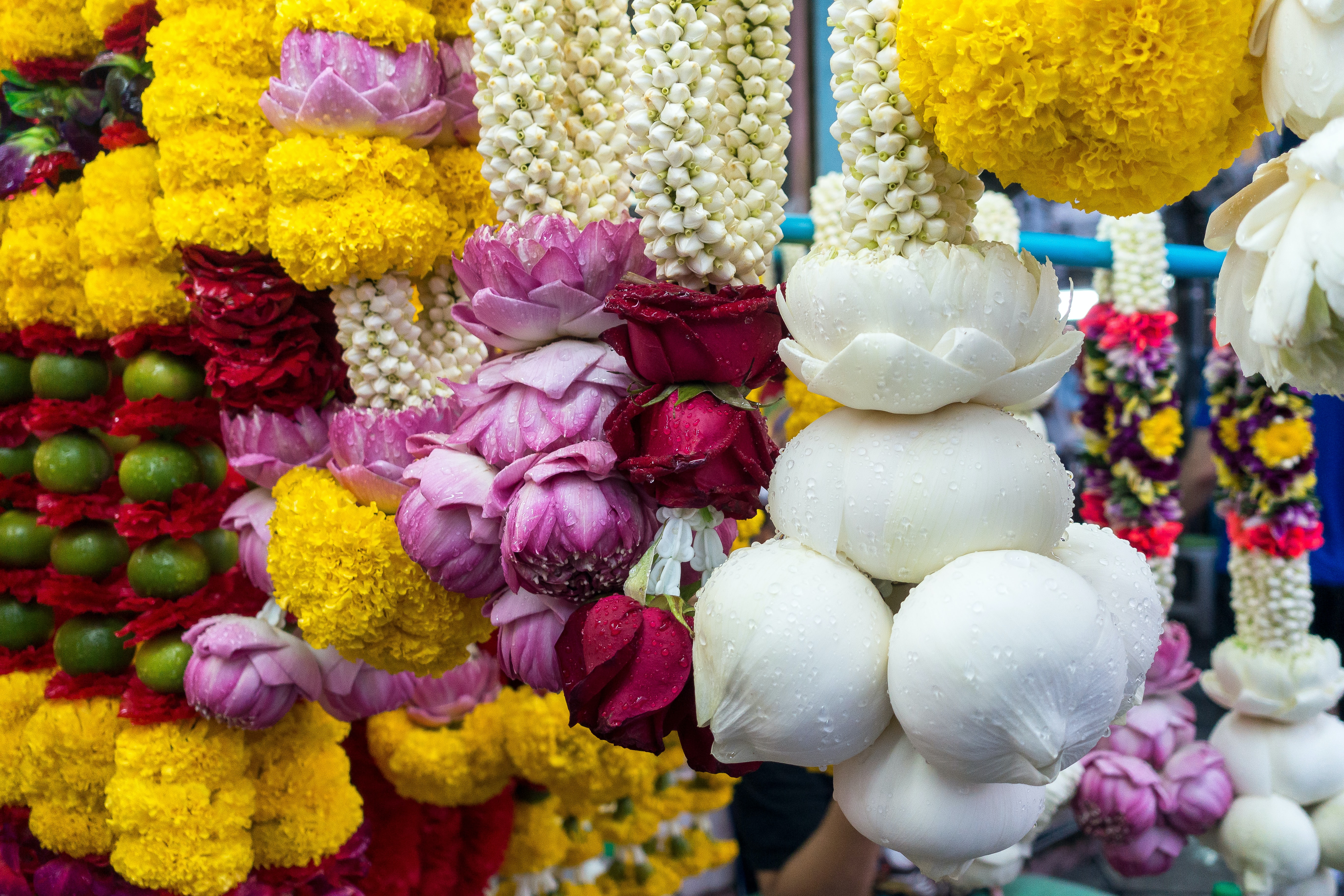 Chiang Mai Flower Festival, Events in Thailand in February