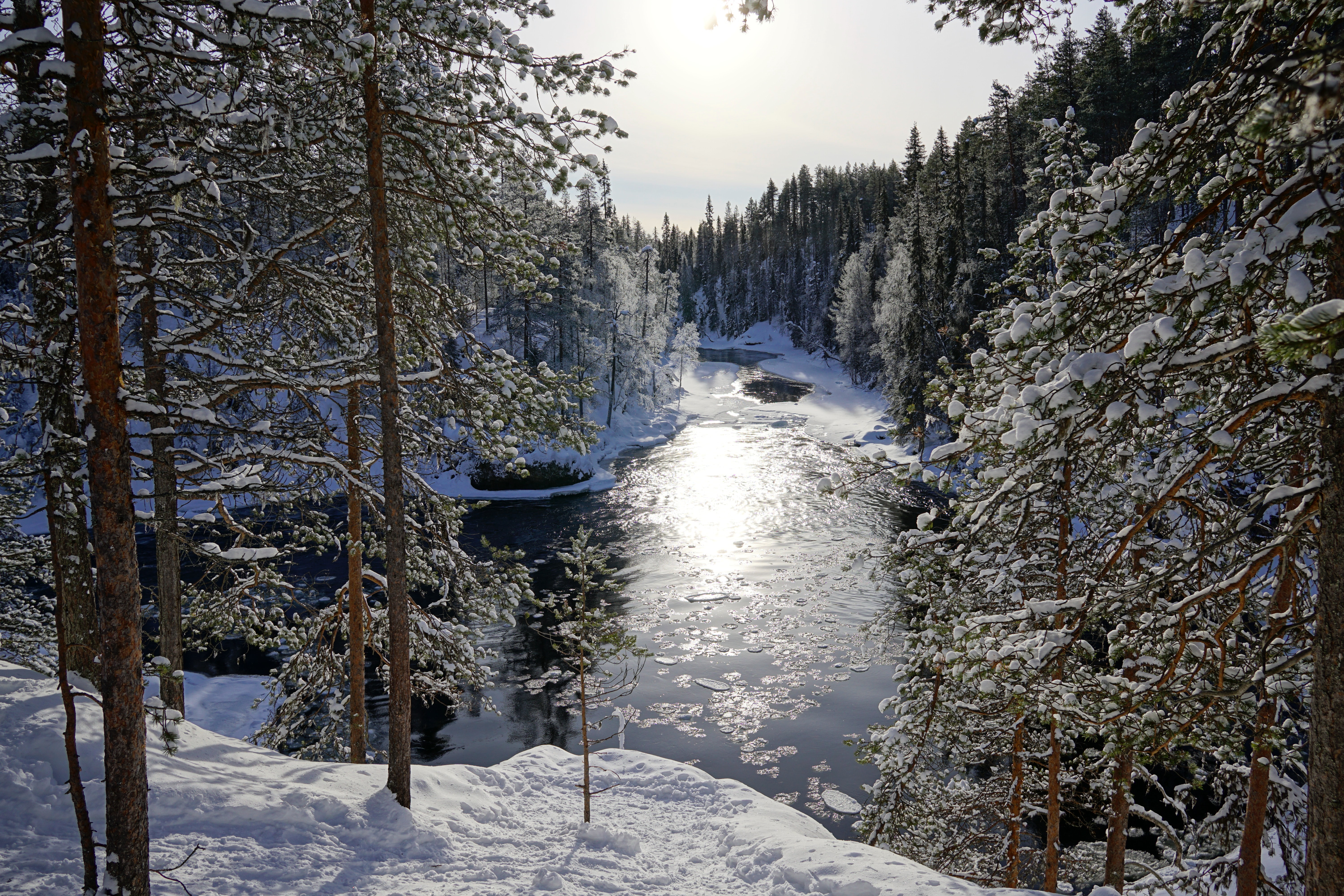 Oulanka National Park, Finland, National Parks to Visit in Europe