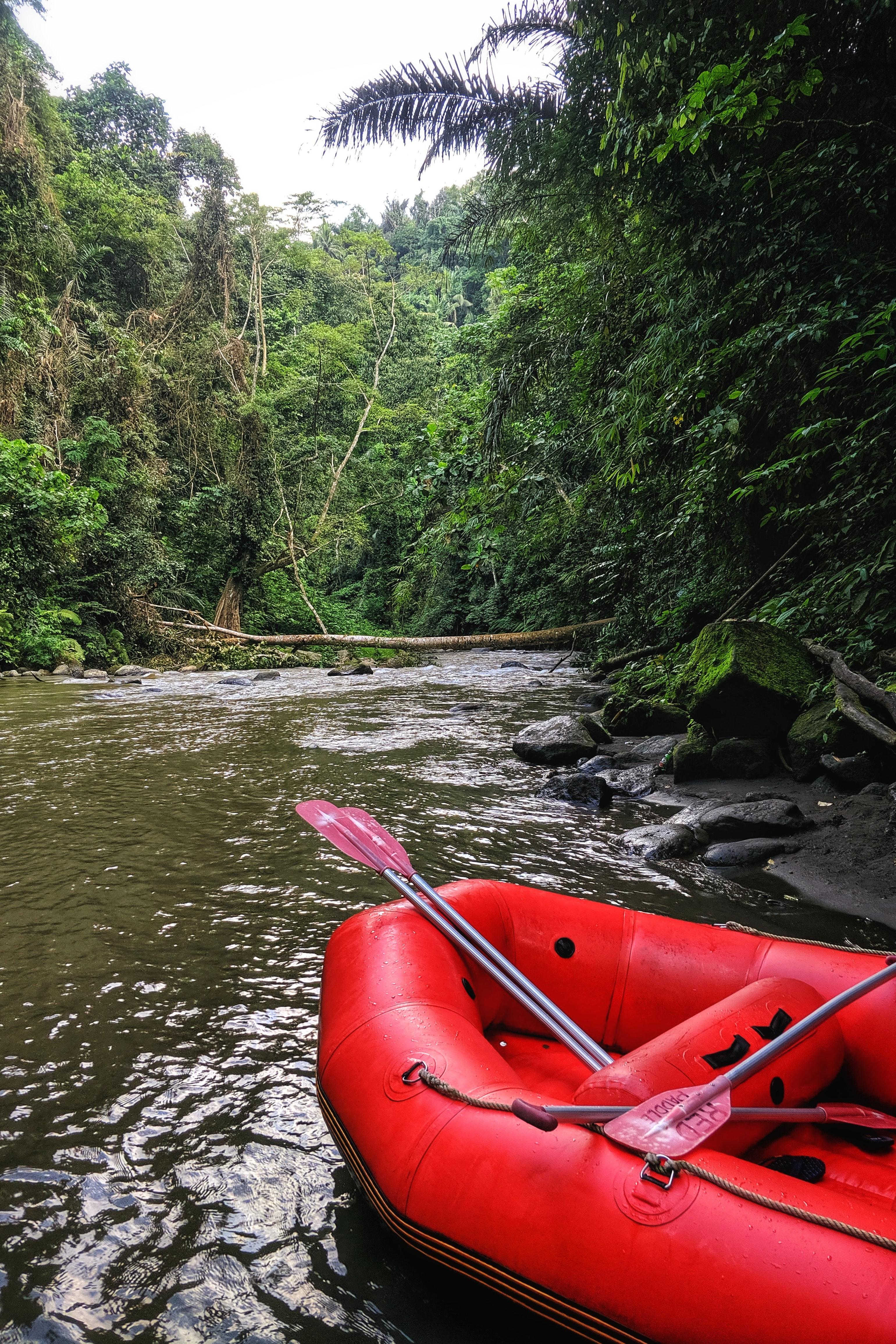 White Water Rafting Ayung River