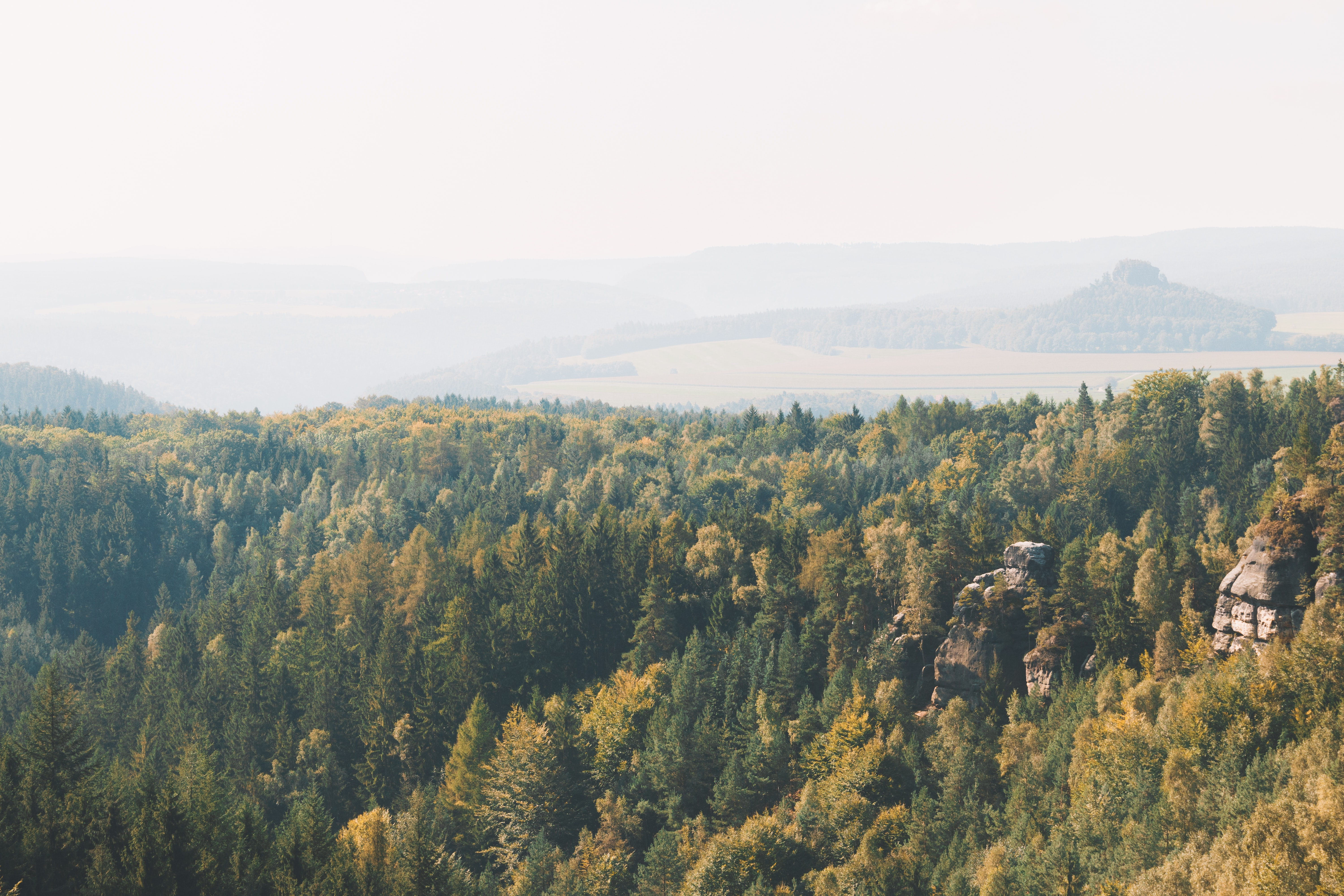 Saxon Switzerland National Park, Germany, National Parks to Visit in Europe