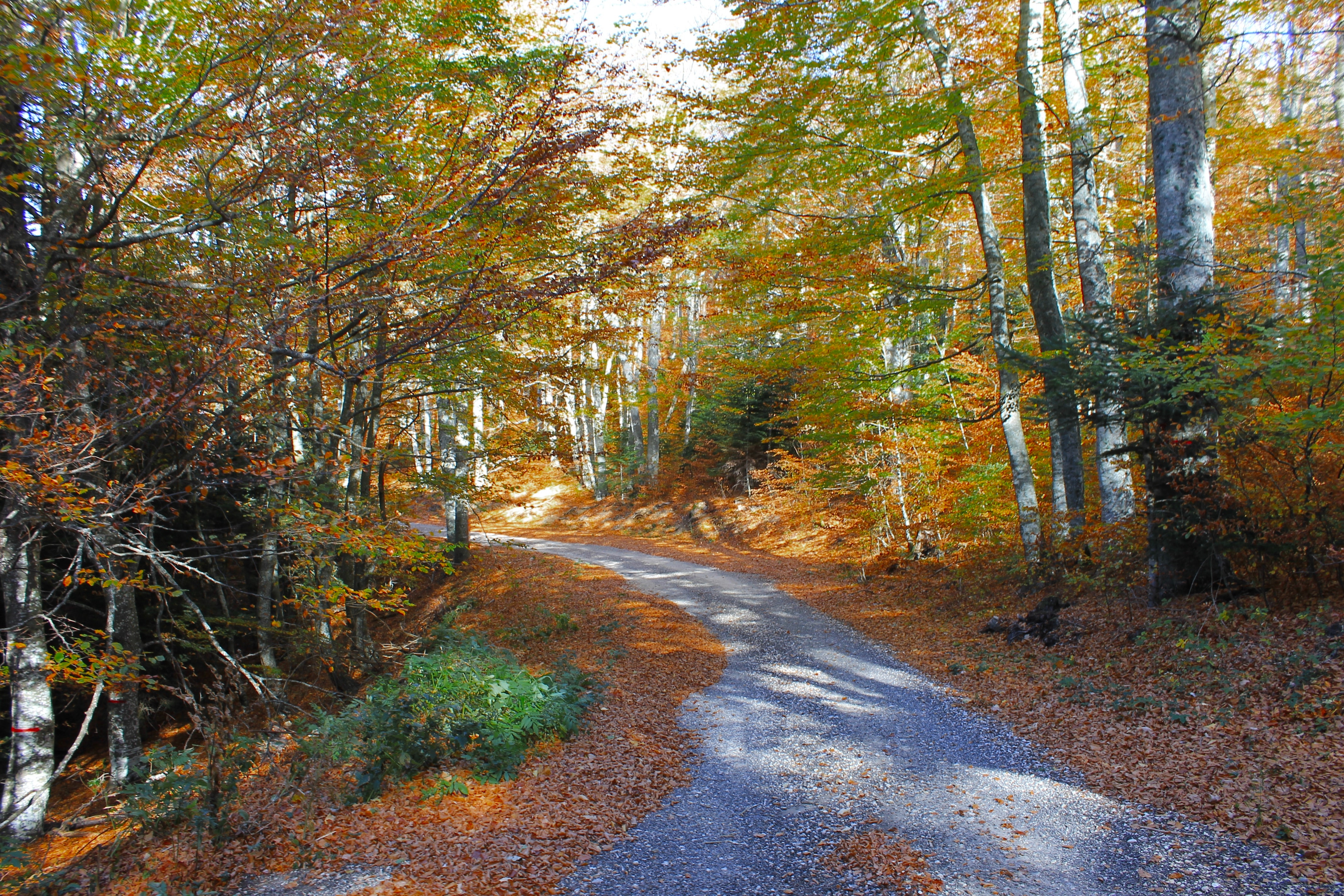 Strolling In Shores And Villages, Things To Do In France in November