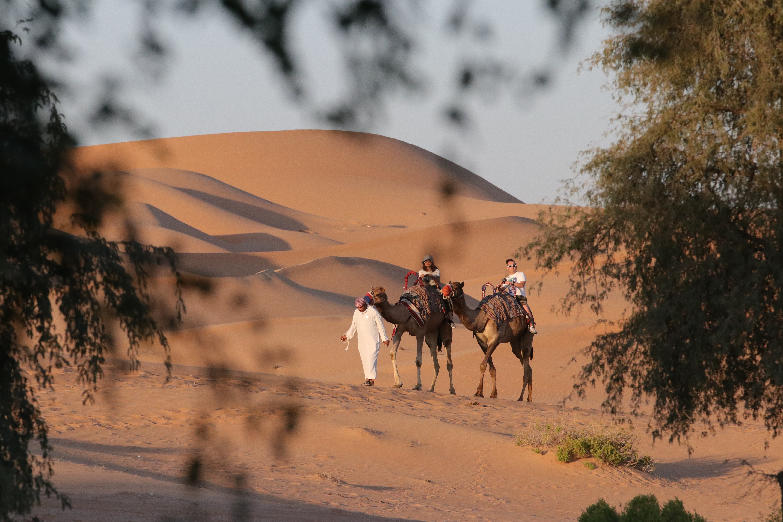 Dune - 2021, Famous Movies Shot in Dubai