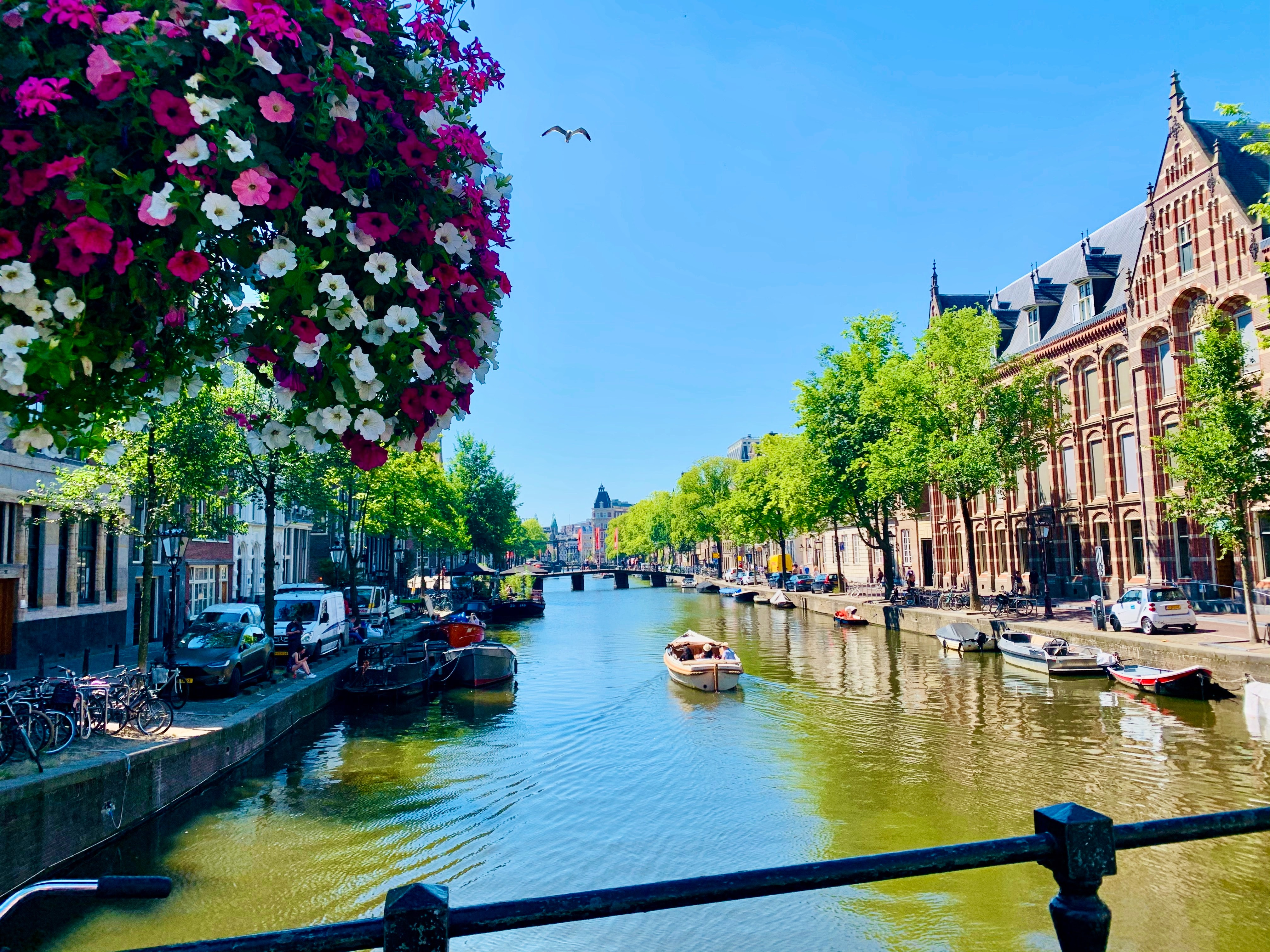 Things to do in Amsterdam in April