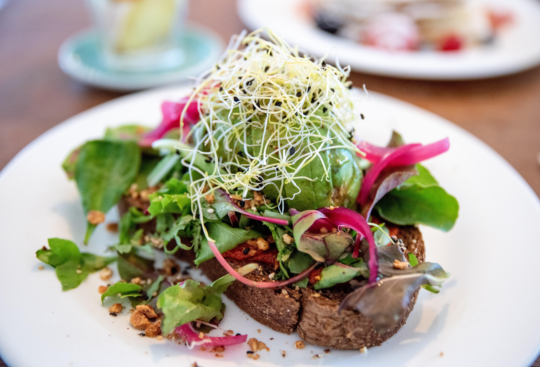 Breakfast, Mortimer, Amsterdam, 10 Best Restaurants In Amsterdam To Visit For Great Food