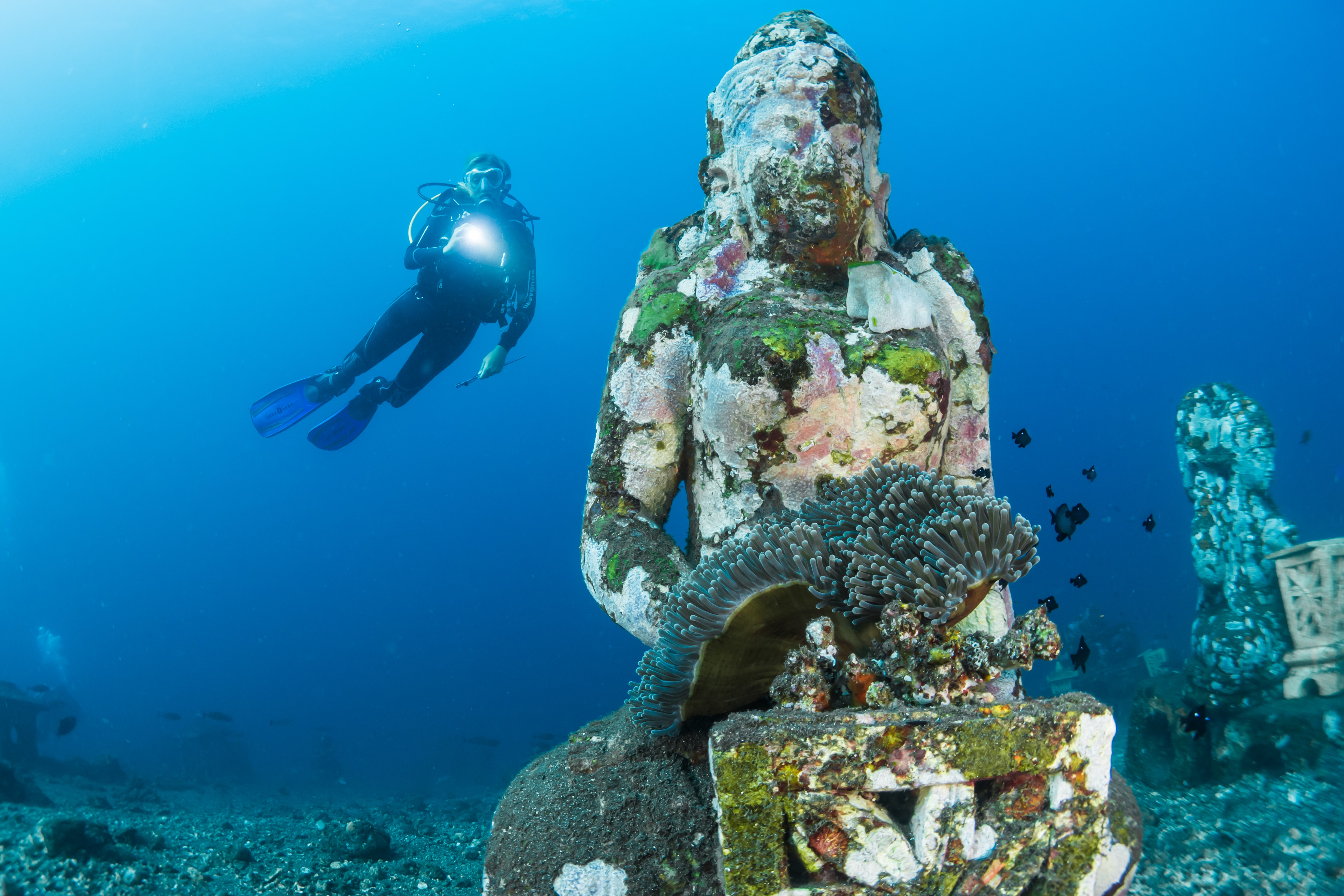 Scuba Diving in Bali, Indonesia, Plan your Bali Honeymoon from India