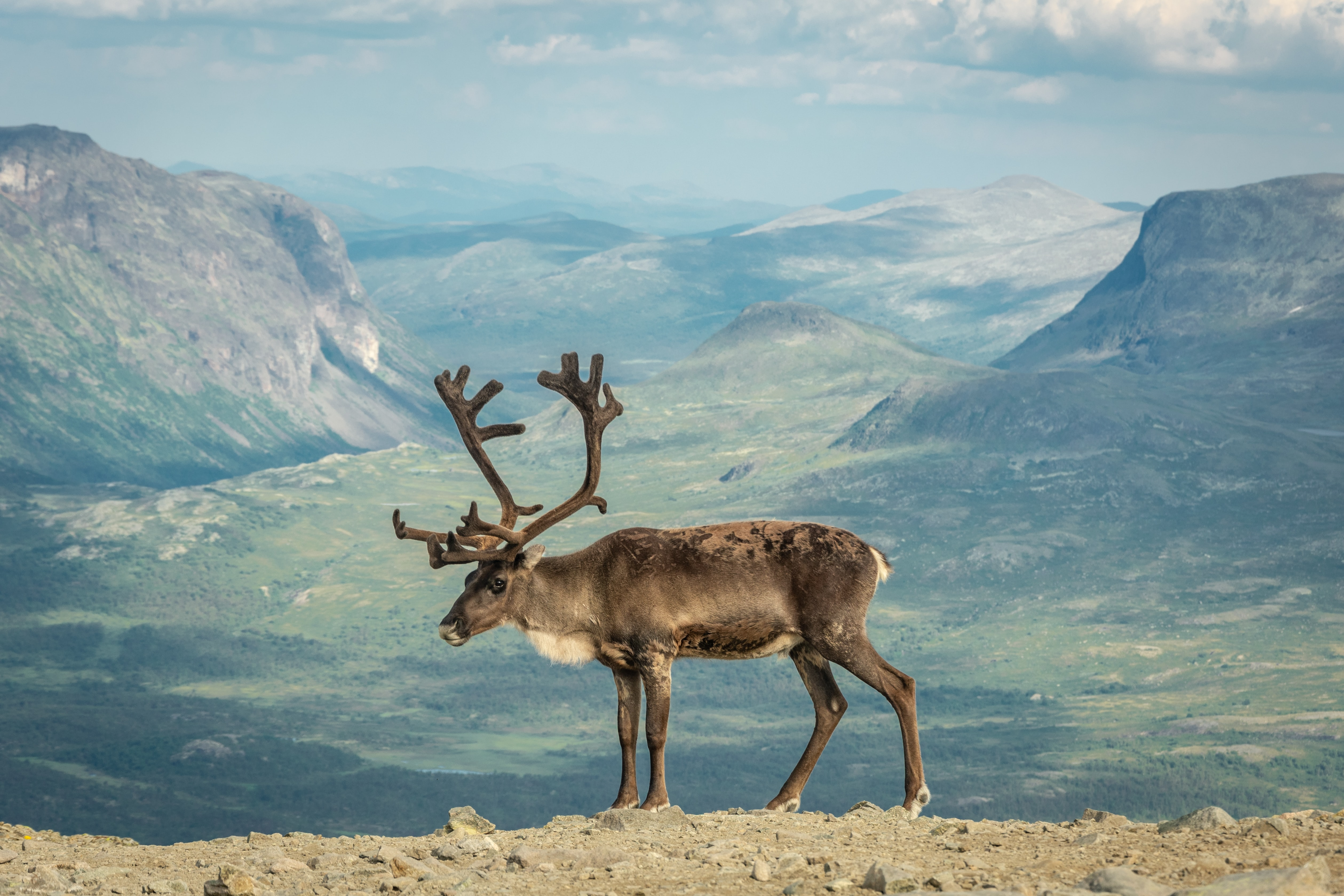 Jotunheimen National Park, Norway, National Parks to Visit in Europe
