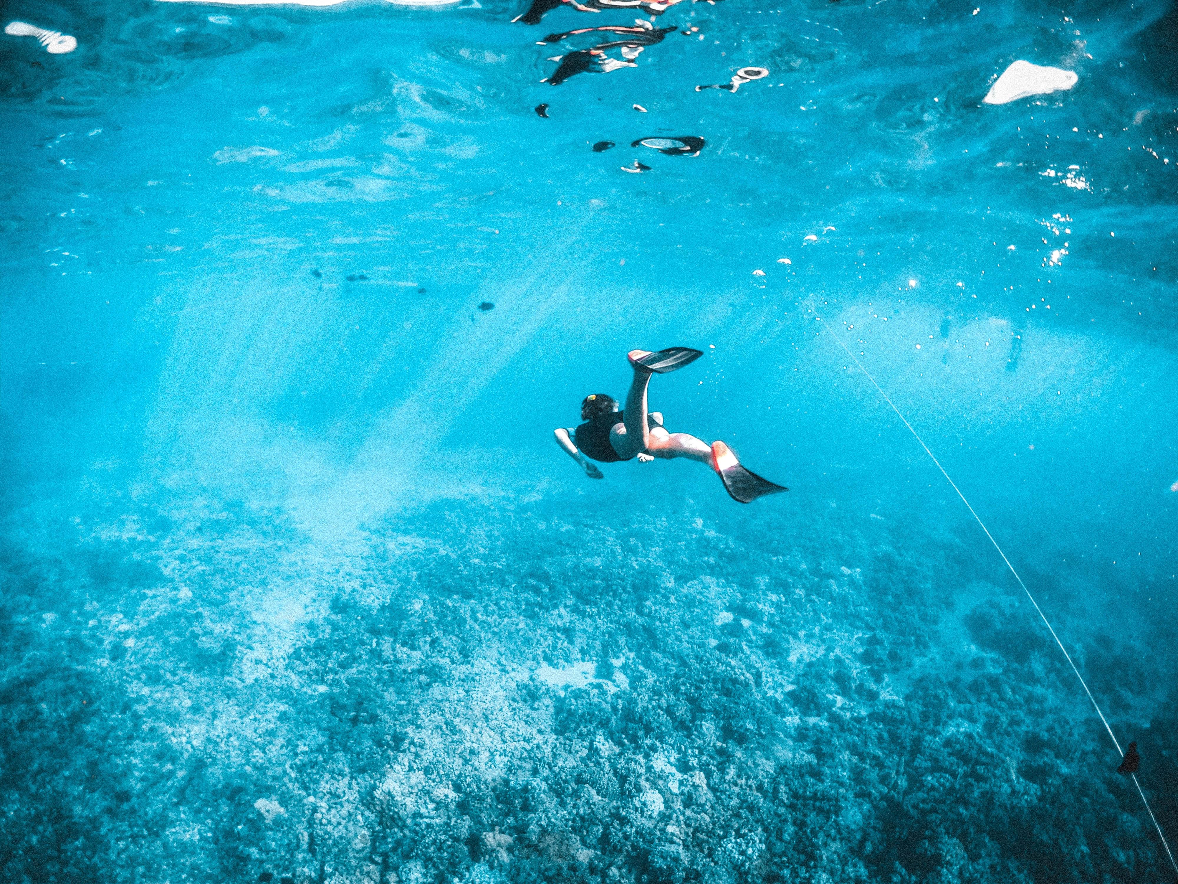Esnórquel en la isla de Maafushi