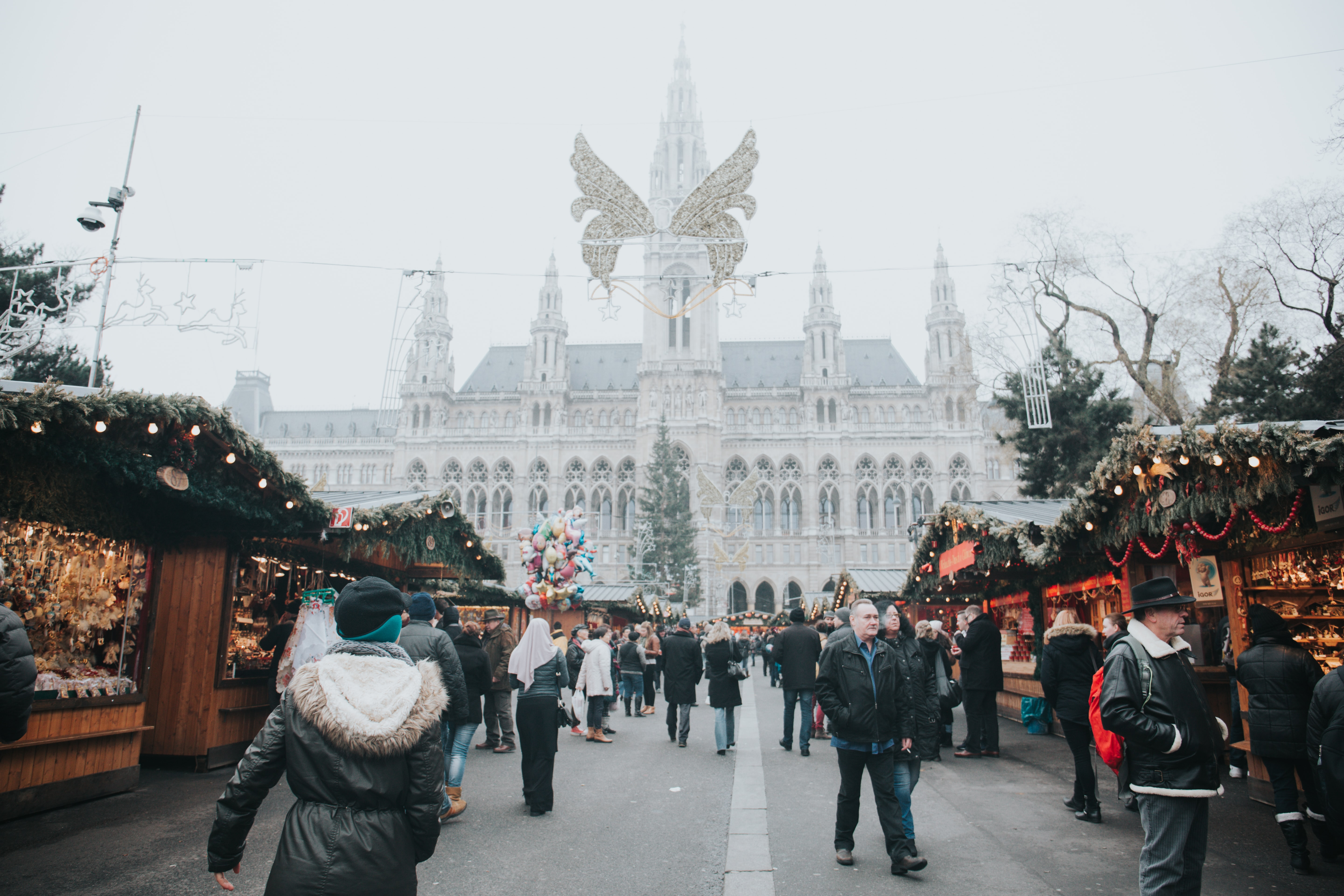 Visit Castles and Palaces, Best things to do in Austria in Winter