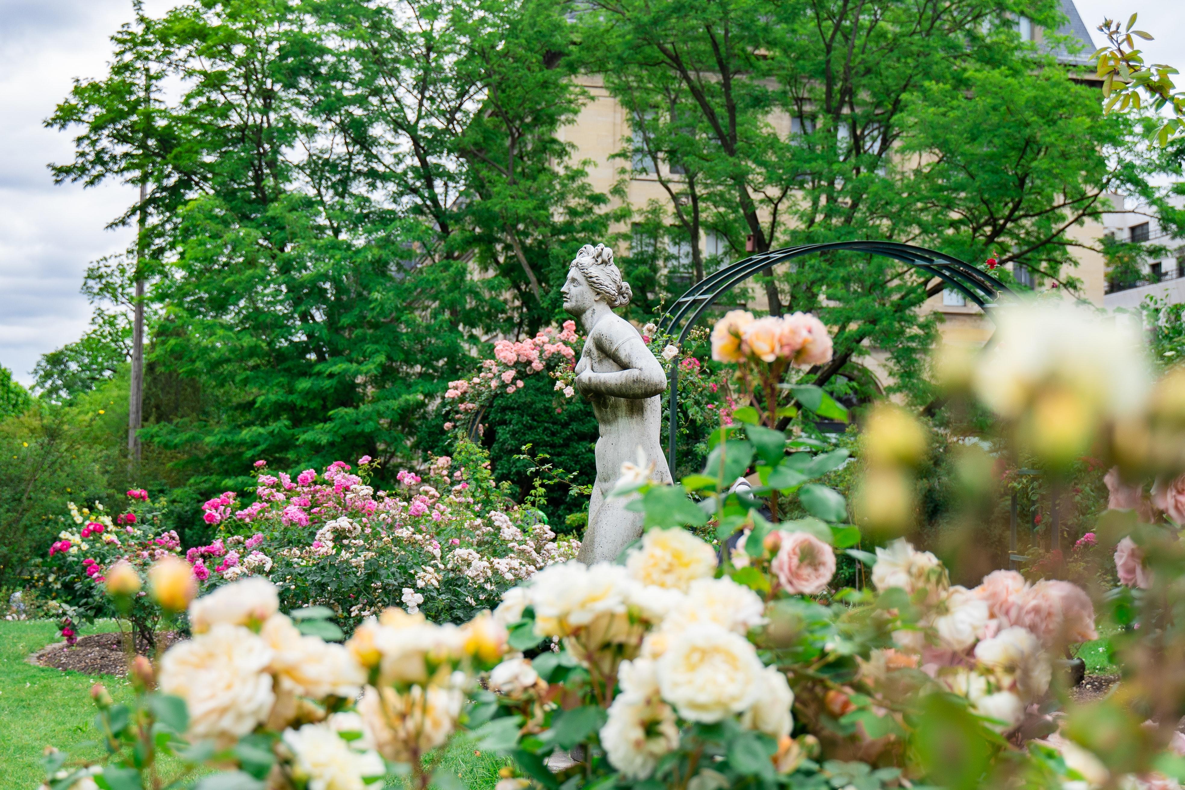 jardin des plantes, most beautiful park in France