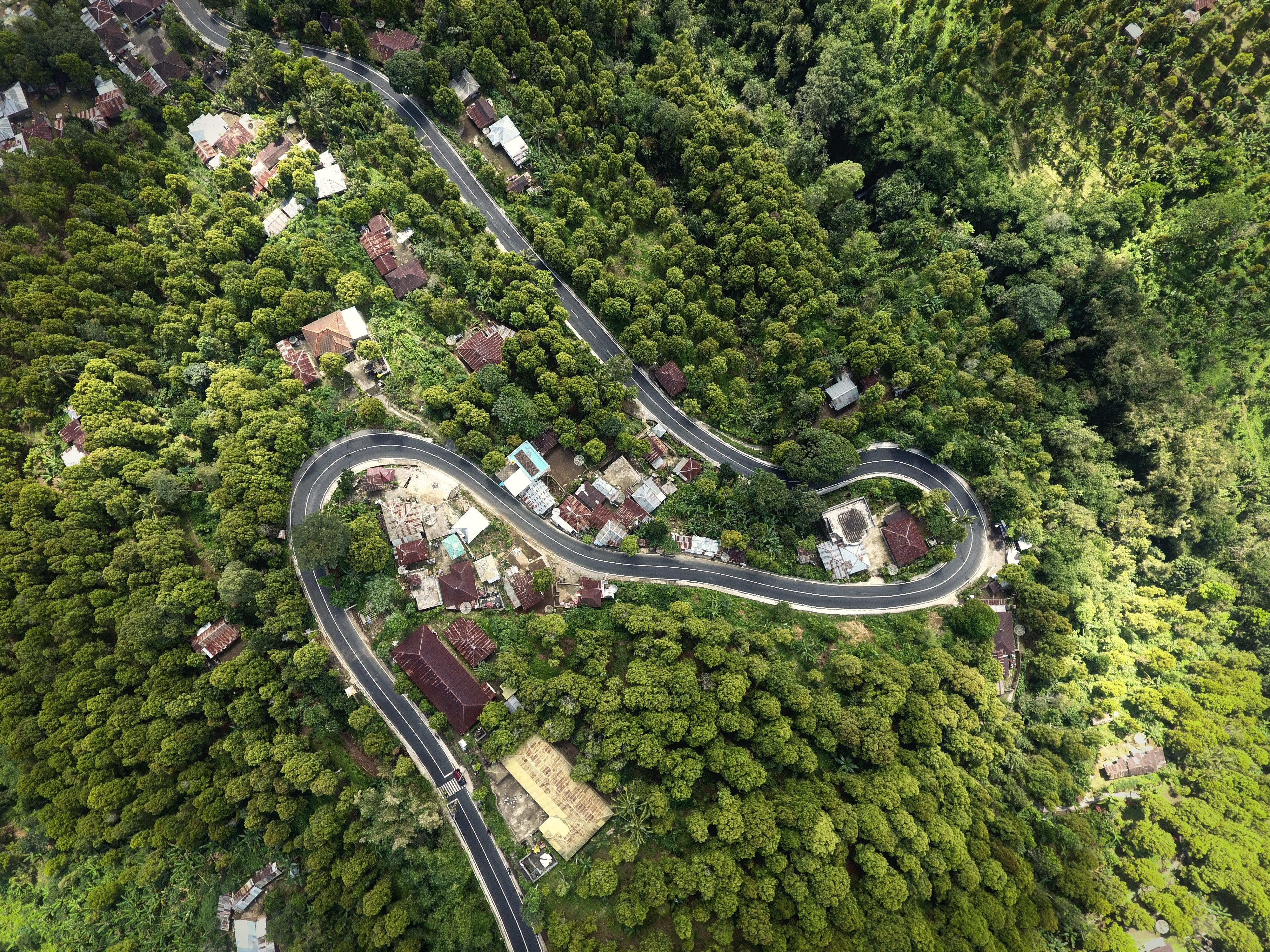 Bali Roads