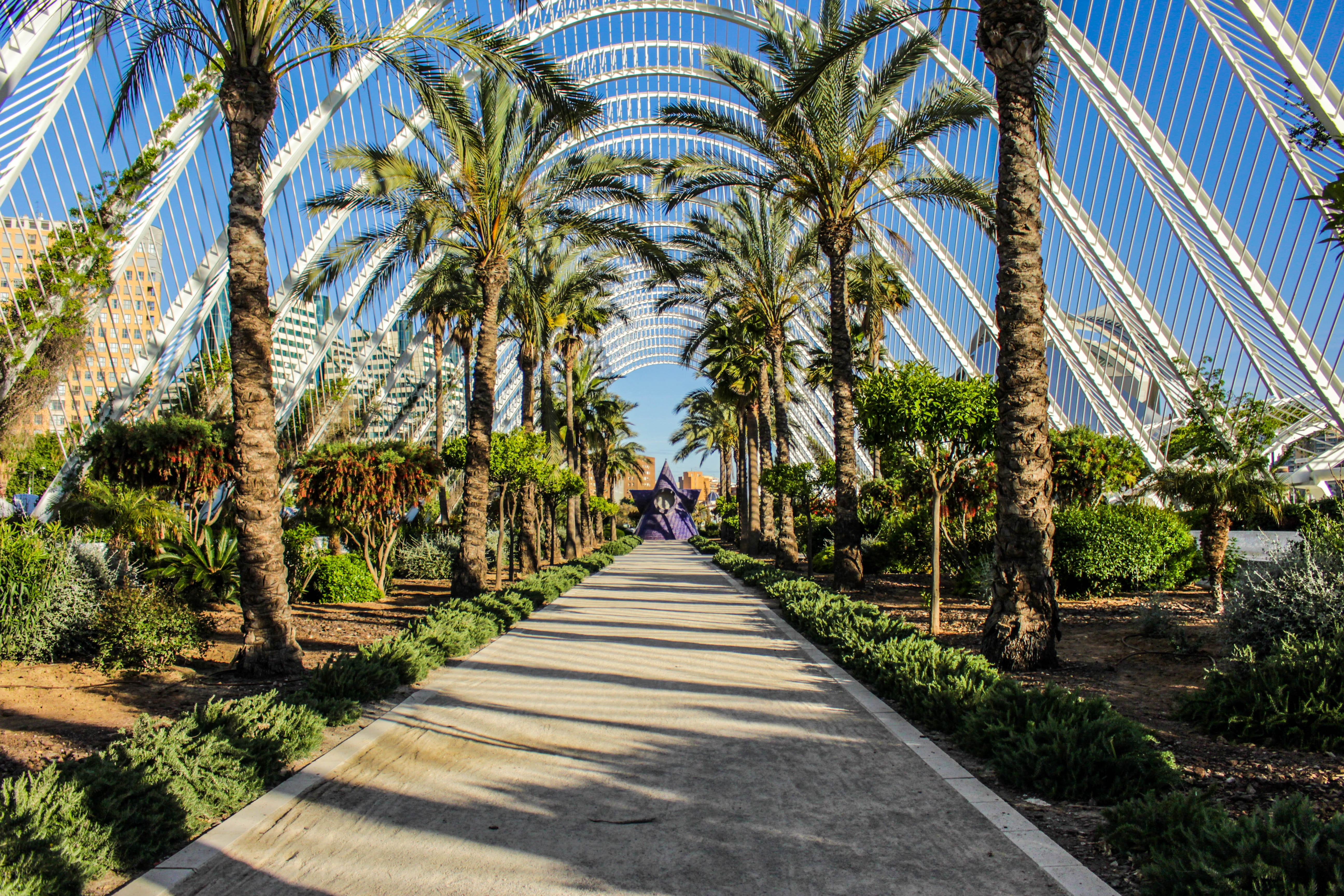 Things to do for free in Valencia