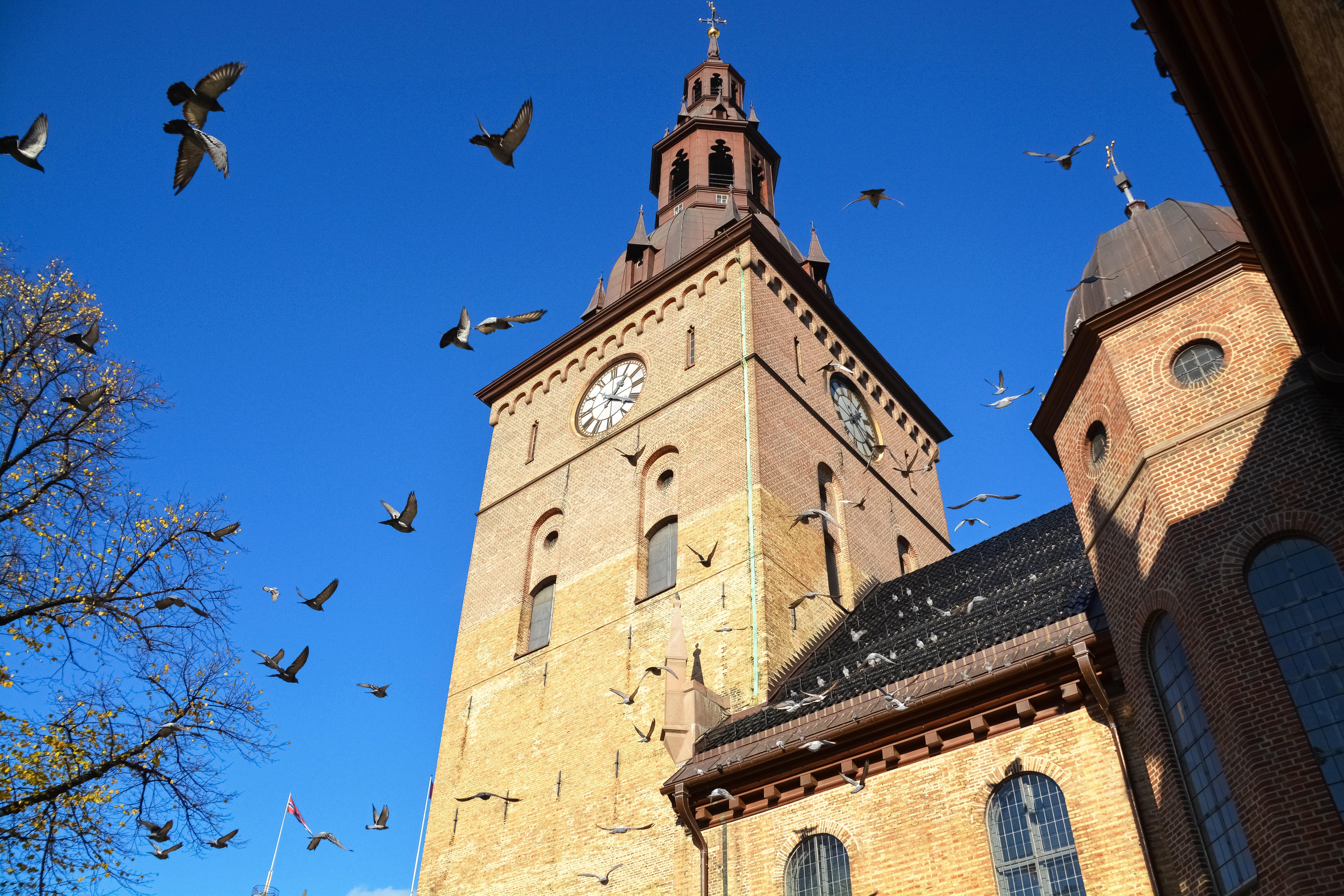 Oslo Cathedral, Free things to do in Oslo