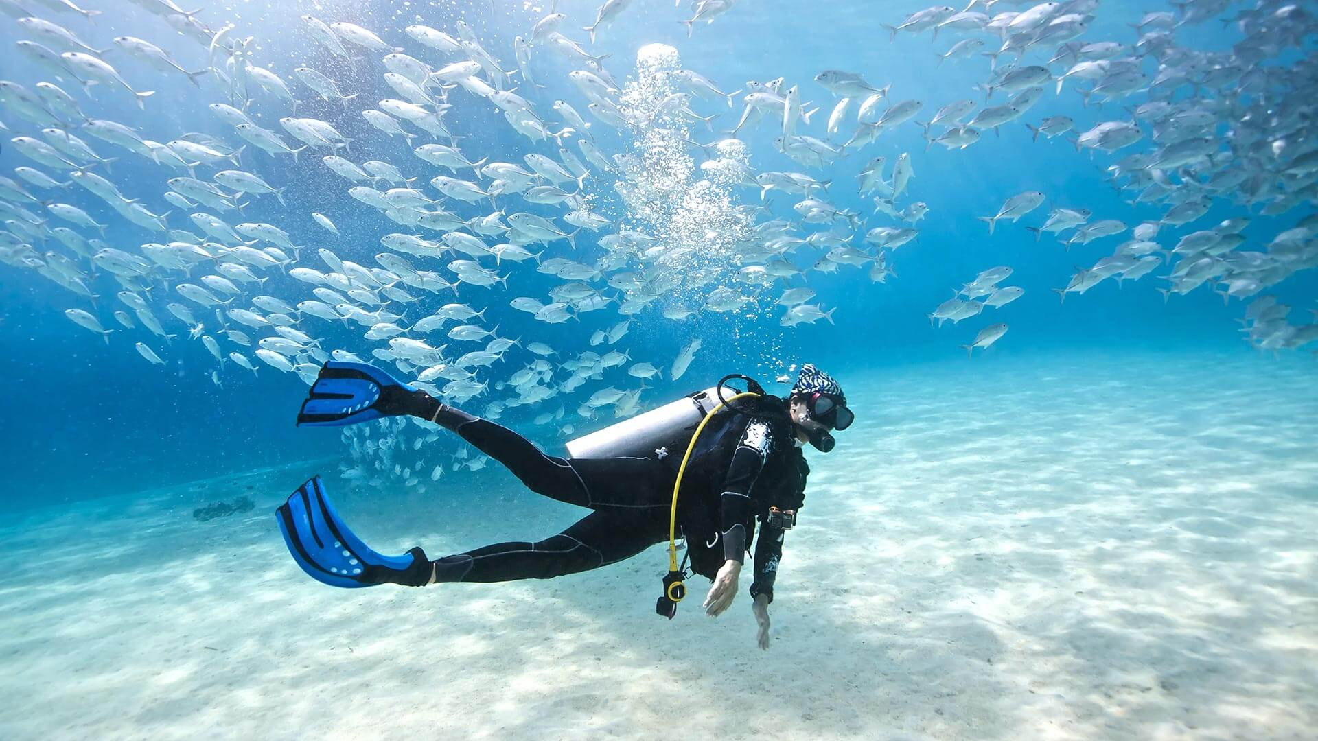 10 Top Scuba Diving Spots In South East Asia