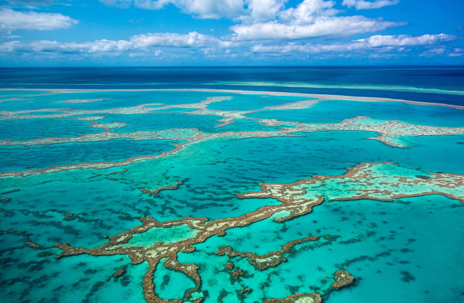 Travel Australia To New Zealand By Boat
