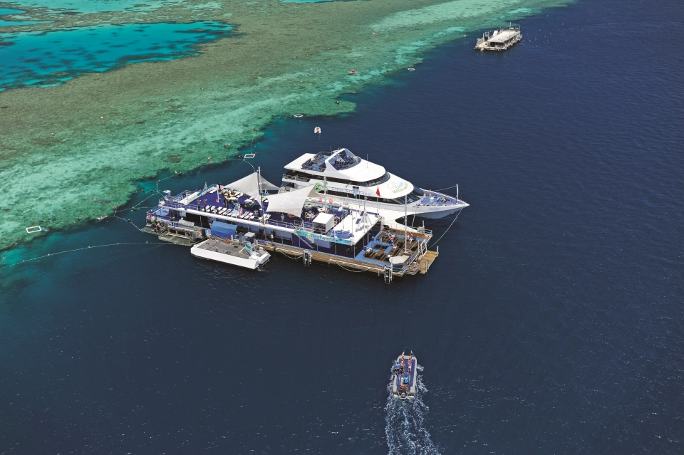 Hamilton island cruise