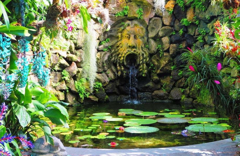 la-mortella-gardens-ischia-23