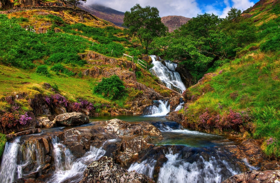 Image Credit : Wales