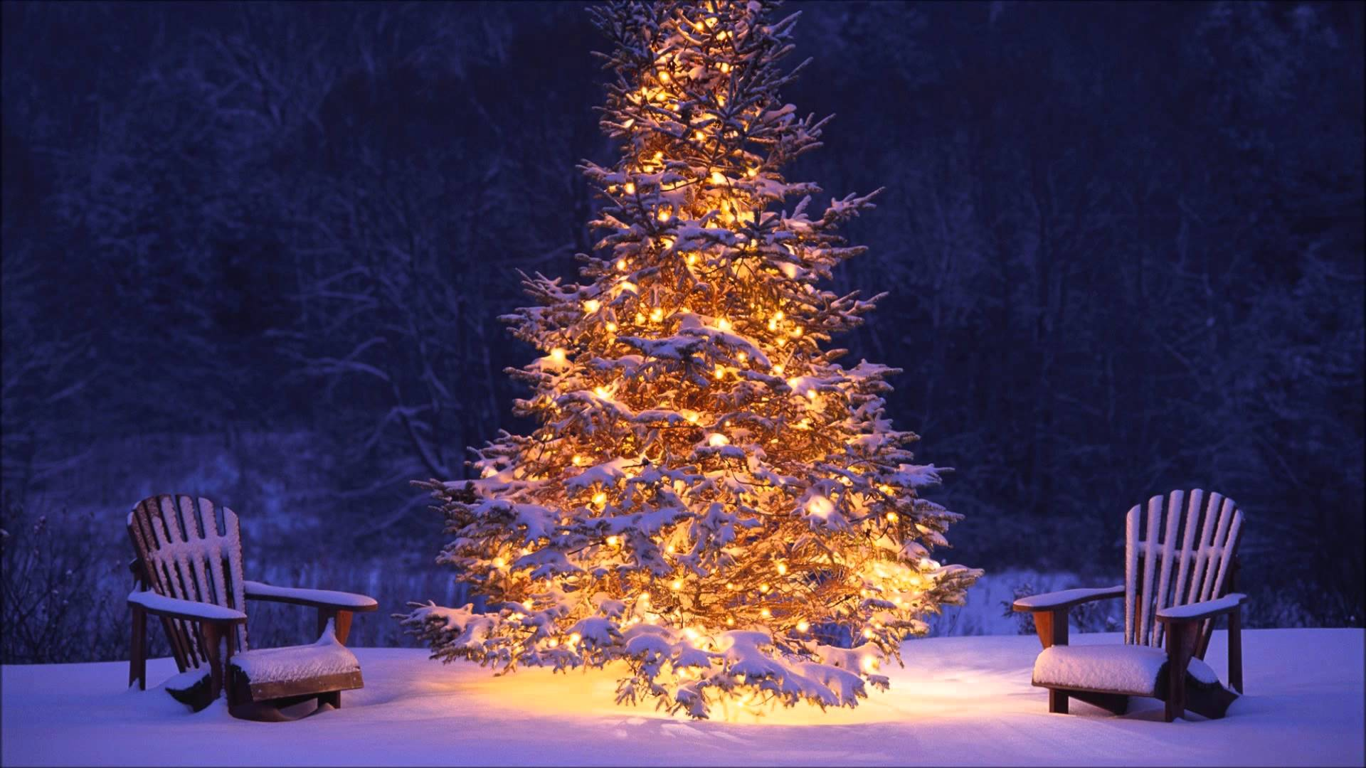 Image result for PICS OF CHRISTMAS