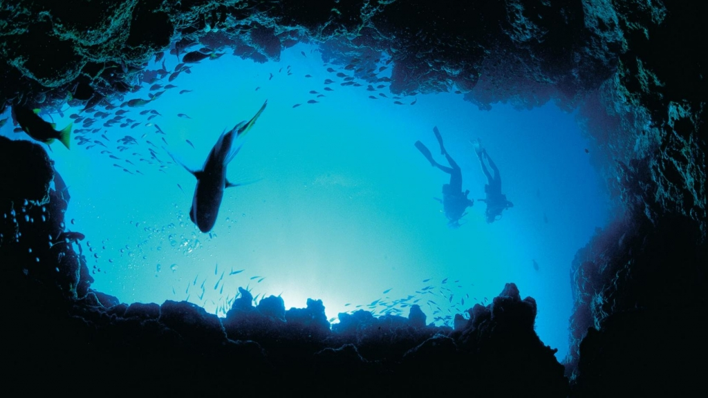Scuba diving from fun in Australia