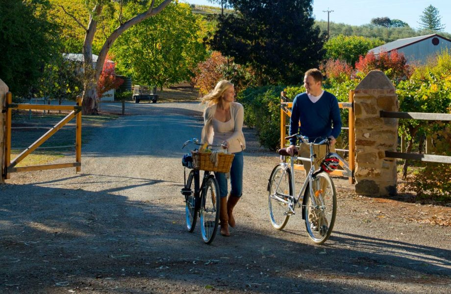 The Barossa valley wine and cycling activity